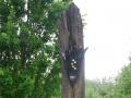 temptation-of-eden-220cm-bog-oak-gold-leaf-lisscannor-slate-base