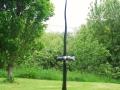 free-spirit-bog-oak-on-polished-kilkenny-limestone-base-153cm