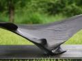 windhover-detail