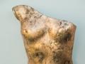 glass-torso-photograph-by-vincent-mcmonagle