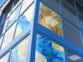 glazing-panels